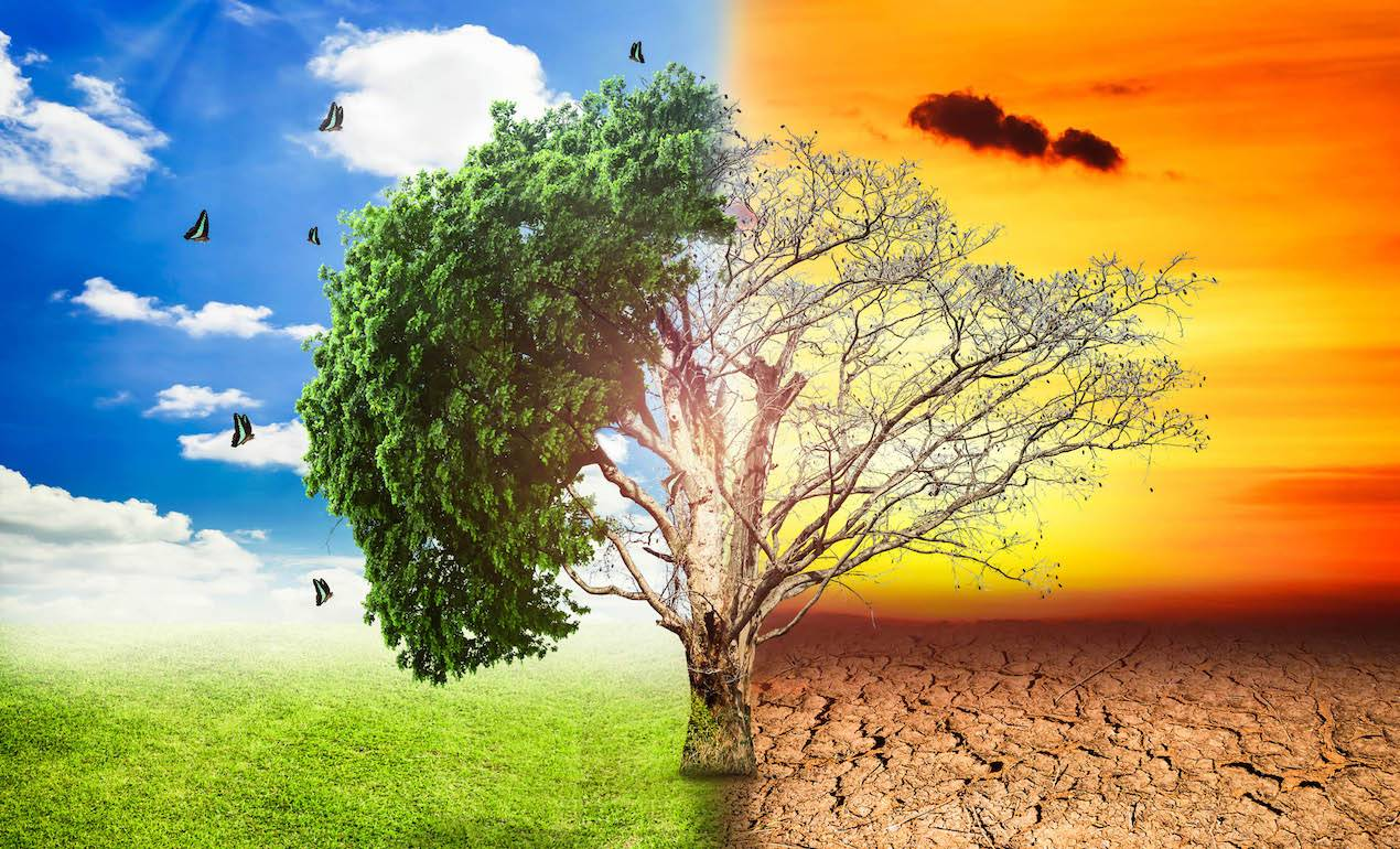 Η λειψυδρία θα πλήξει έως το 2025 περίπου 4 δισεκατομμύρια ανθρώπους στον  πλανήτη μας.   kefaloniapress.gr